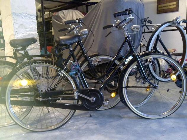 RALEIGH Cabourg - Foto 2
