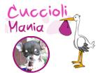 Cucciolimania