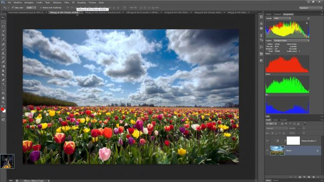 CORSO ON LINE DI PHOTOSHOP - TREVISO