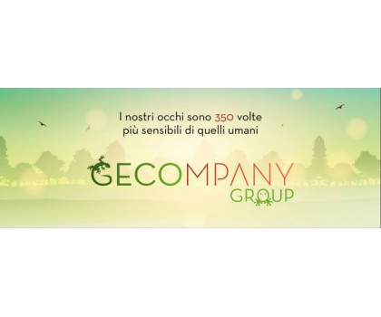 GECOMPANY GROUP - Foto 45 -