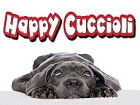 HAPPY CUCCIOLI