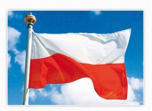 Traduzioni ed interpretariato in polacco