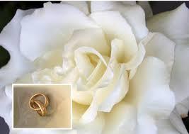 CORSO WEDDING PLANNER - CAMPOBASSO - Foto 3