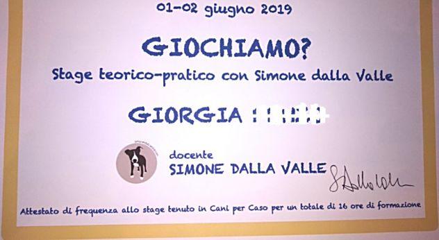 Dog sitter e dog walker educatore cinofilo Giorgia - Foto 4