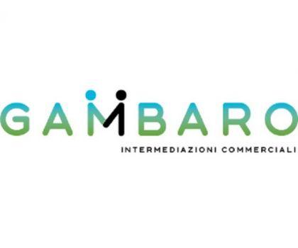 GAMBARO INTERMEDIAZIONI COMMERCIALI -