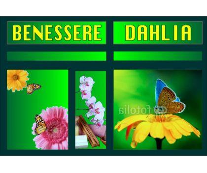 Centro Benessere Dahlia -