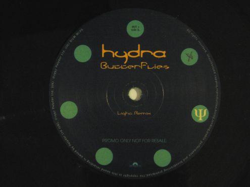 Doppio vinile 45 rpm promo-Hydra-Butterfly - Foto 2