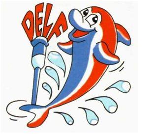 PREPARAZIONE ESAME CERTIFICAZIONE DELF / DALF FRANCESE