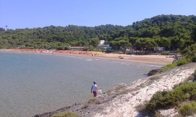 Villino Bilocale indipendente con piscina , offerta bassa stagione - Foto 8