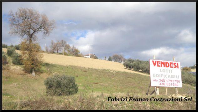 Terreni Edificabili a Destinazione Uso Residenziale/Commerciale - Foto 2