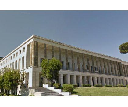 Agenzia Formativa Dante Alighieri  - Foto 100 -
