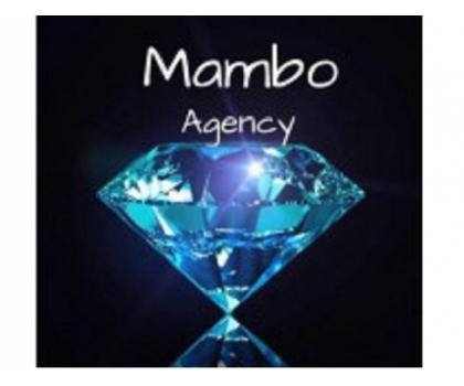 MAMBO AGENCY - Foto 46