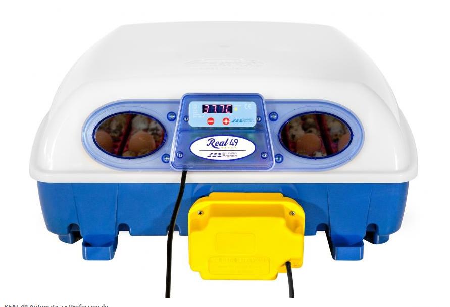 Incubatrice automatica REAL 49 Borotto - Cardelli