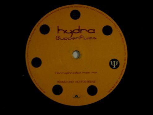 Doppio vinile 45 rpm promo-Hydra-Butterfly - Foto 4