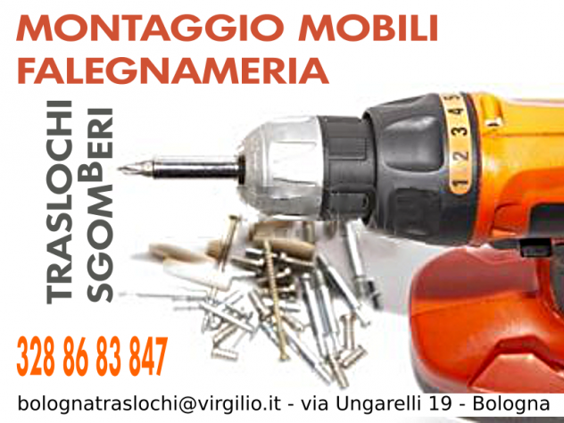 Il trasloco facile a Bologna-- MONTAGGIO MOBILI & TRASLOCHI & SGOMBERI - - Foto 4