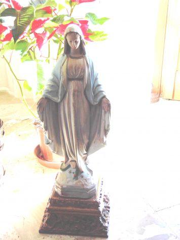 Statua Madonna di Lourdes - Foto 2