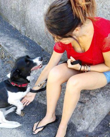 Dog Sitter, Pensione per animali a Riposto/Giarre - Foto 4