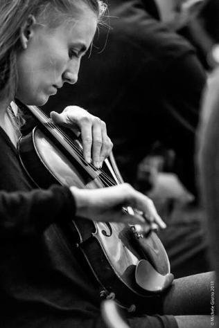 Offro lezioni di violino