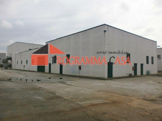 Capannone industriale in vendita a Pomezia via vaccareccia c11