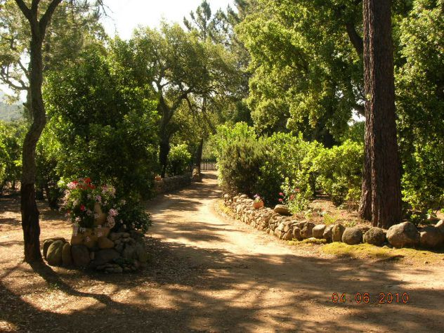 Zona Porto Vecchio Corsica del Sud - Foto 2
