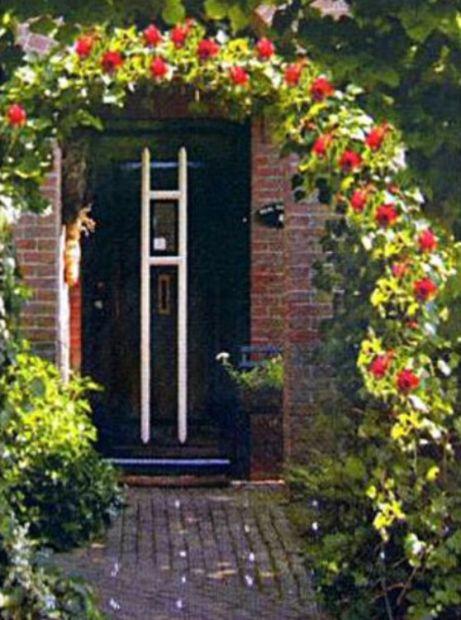 Arco per rose e piante rampicanti da giardino nuovo 15 for Rose da giardino