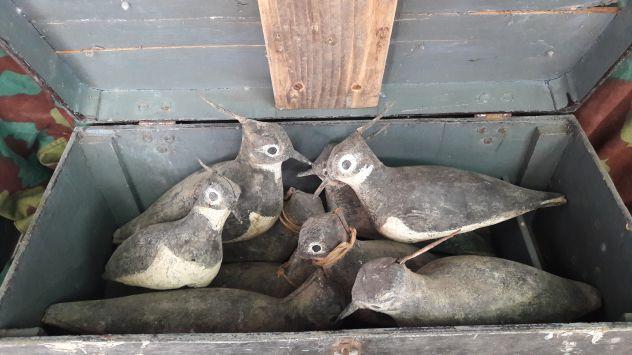 Richiami uccelli in legno