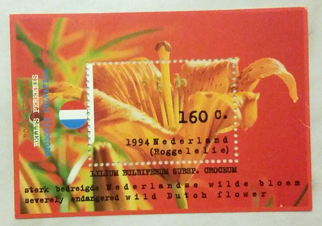 Francobollo 1994 Nederland Lilium Bulbiferum Subsp.Croceum-blocchetto non viaggi