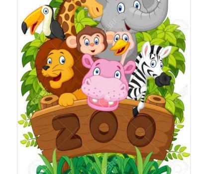 Zoo Palma - Foto 825