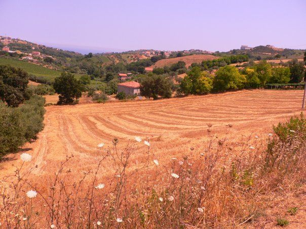 Vendesi terreni artigianali logisticamente ideali a Montesilvano Colle - Foto 2
