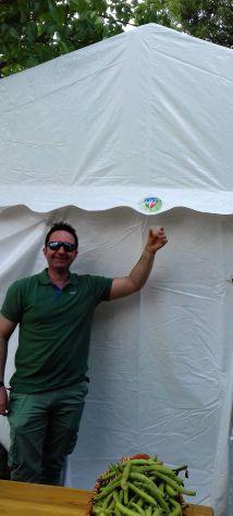 Tendoni per Eventi e Feste, in Pvc Ignifugo  5 x 10  MM italia - Foto 5