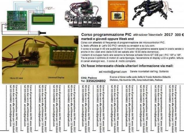 Micro-GT mini scheda programmazione PIC 16F876A - Foto 4