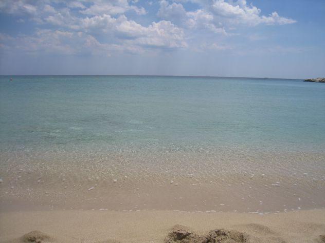 Terreno con ulivi a 900mt dal mare (Maruggio-TA) - Foto 5