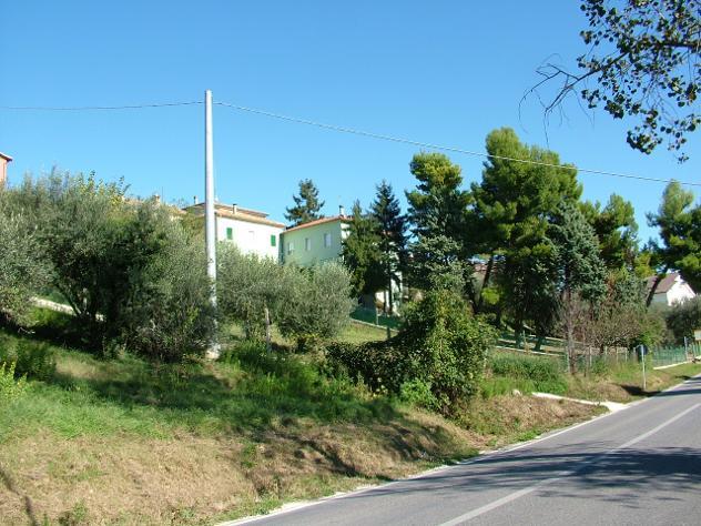 Privato terreno edificabile mq 1100 Euro 65.000 - Foto 2