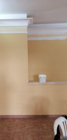 Pittore rasatore - Foto 2