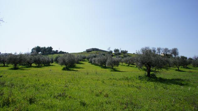 Vendesi terreni artigianali logisticamente ideali a Montesilvano Colle - Foto 4
