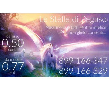 LE STELLE DI PEGASO - Foto 2 -