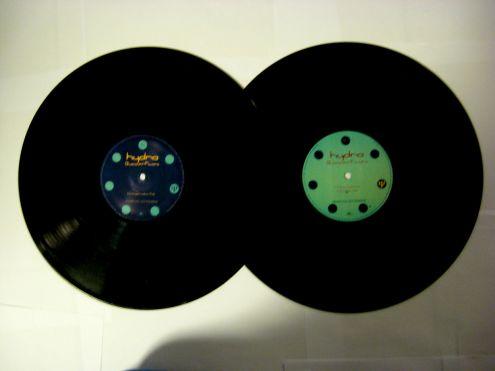 Doppio vinile 45 rpm promo-Hydra-Butterfly - Foto 5