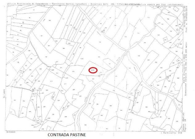 Terreni in vendita ad Oratino - Foto 4