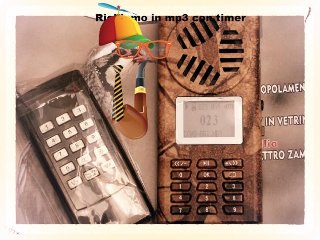 richiamo x uccelli CON telecomando e timer - Foto 10