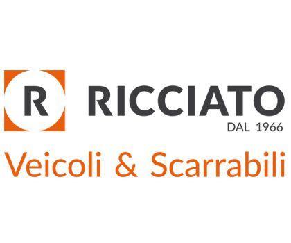 RICCIATO VEICOLI & SCARRABILI  -