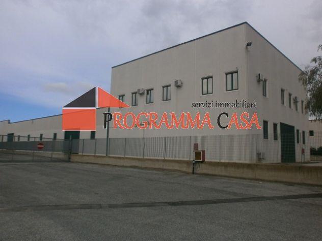 Capannone industriale in vendita a Pomezia via vaccareccia c11 - Foto 6