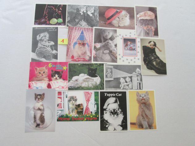 Set 16 cartoline da collezione di gattini
