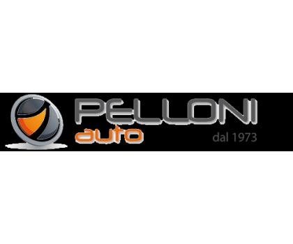 Pelloni Auto spa -