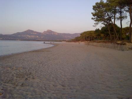 Corsica,  monolocale a 50 metri dalla spiaggia - Foto 6