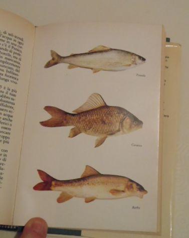 Il libro della pesca in acque dolci, Renzo Portalupi, 1979. - Foto 10