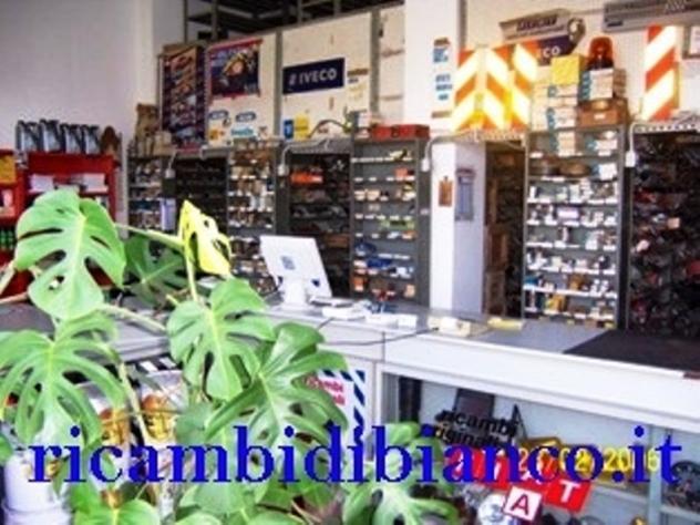 RICAMBIDIBIANCO- EPOCA & NON Nuovo Euro 1