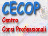 CORSI ON LINE DI CONTABILITA' - PAGHE E CONTRIBUTI - ECDL - ALESSANDRIA