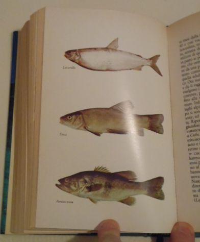 Il libro della pesca in acque dolci, Renzo Portalupi, 1979. - Foto 9