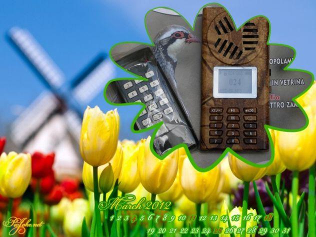 richiamo x uccelli CON telecomando e timer - Foto 3