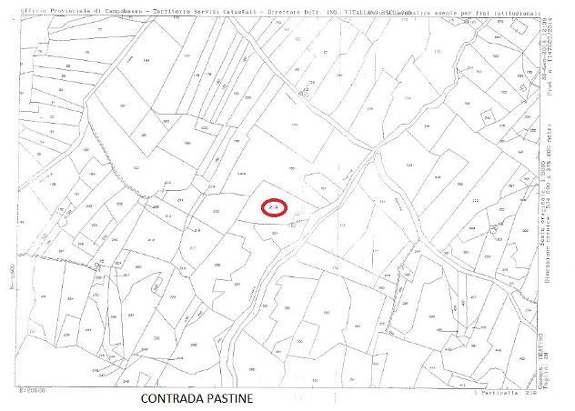 Privato terreno non edificabile mq 17000 Euro 60.000 - Foto 4